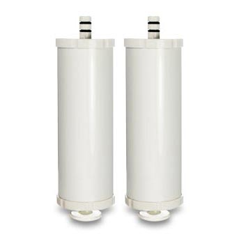 Two Carbon Replacement Filters